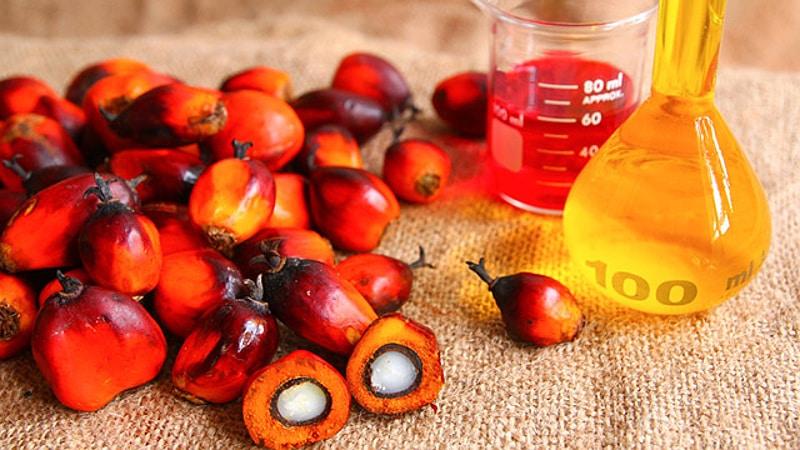 L'olio di palma: quasi sparito dagli ingredienti di molti prodotti-0